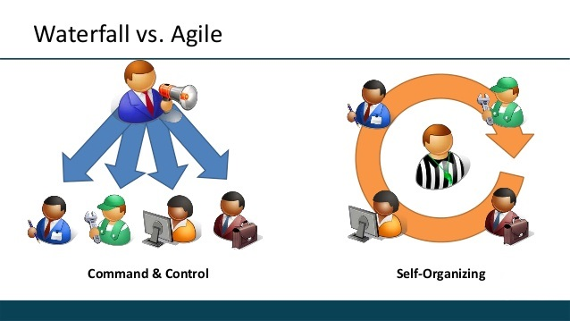 Your Organization Is Adopting Agile Methodologies, But Somehow You Feel Left Behind